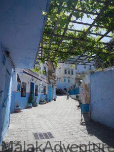 Trekking Marruecos-Viajes Marruecos-Senderismo-Chaouen