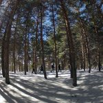 Raquetas de Nieve-Veleta-Mulhacen-Trekking-Mountain Guides