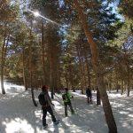 Senderismo-Raquetas de Nieve-Veleta-Mulhacen